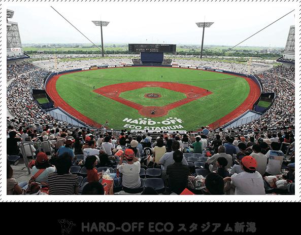 HARD-OFF ECOスタジアム新潟