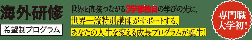 海外研修 希望制プログラム 専門職大学初!
